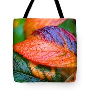 Rainy Day Leaves Tote Bag by Rona Black