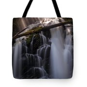 Ranger Falls Sunbeams Tote Bag by Mike Reid
