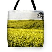 Rape Landscape With Lonely Tree Tote Bag by Heiko Koehrer-Wagner