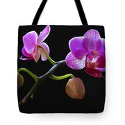 Rare Beauty Tote Bag by Juergen Roth