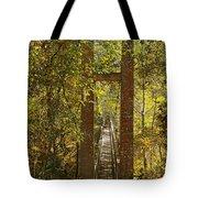 Ravine Gardens State Park In Palatka Fl Tote Bag by Christine Till