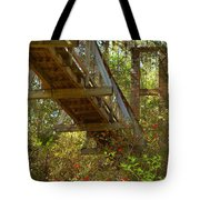 Ravine State Gardens Palatka Florida Tote Bag by Christine Till