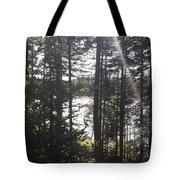 Ray O Light Tote Bag by Melissa McCrann