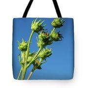 Reach Tote Bag by Christi Kraft