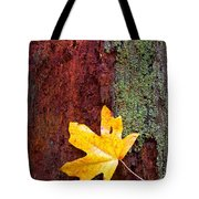 Reclamation Tote Bag by Mike  Dawson