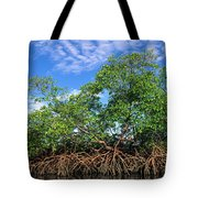 Red Mangrove East Coast Brazil Tote Bag by Pete Oxford