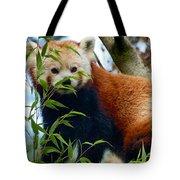 Red Panda Tote Bag by Trever Miller