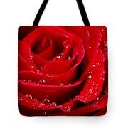 Red Rose Tote Bag by Elena Elisseeva