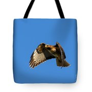 Red-tail Hover Tote Bag by Mike  Dawson