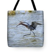 Reddish Egret Canopy Feeding Tote Bag by Louise Heusinkveld