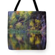 Reflected Fall Tote Bag by Peter Coskun
