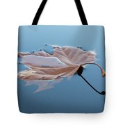 Reflection Tote Bag by Jane Ford