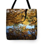 Reflections Tote Bag by John Telfer
