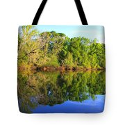 Reflections On The River Tote Bag by Debra Forand