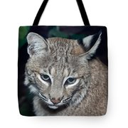 Reflective Bobcat Tote Bag by John Haldane