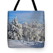 Refresh Tote Bag by Lois Bryan