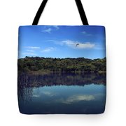 Regardless Of The Blues Tote Bag by Laurie Search
