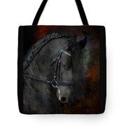 Rembrandt  Tote Bag by Fran J Scott