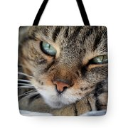 Rest Tote Bag by Susan Smith