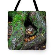 Resting Tote Bag by Juergen Roth