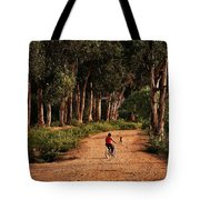 Returning Home Tote Bag by Mary Jo Allen