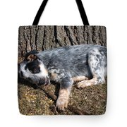 Ridiculously Cute Tote Bag by James Peterson