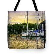 Ripples At Sunset Tote Bag by Brian Wallace