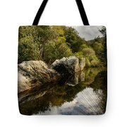 River Reflections II Tote Bag by Marco Oliveira