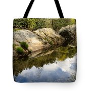 River Reflections IIi Tote Bag by Marco Oliveira