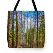 River Run Trail At Arrowleaf Tote Bag by Omaste Witkowski