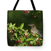Robin And Berries Tote Bag by Mircea Costina Photography