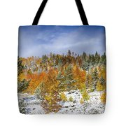 Rocky Mountain Autumn Storm Tote Bag by James BO  Insogna