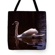 Romeo or Juliet Tote Bag by Rona Black