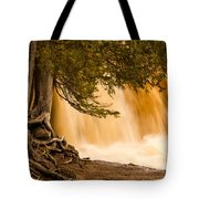 Rooted In Spring Tote Bag by Mary Amerman