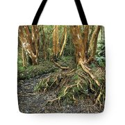 Roots Tote Bag by James Brunker