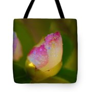 Rose Bud Tote Bag by Cheryl Young