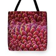 Rose Petal Surface Sem Tote Bag by Eye of Science