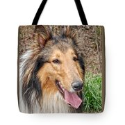 Rough Collie Tote Bag by Kenny Francis