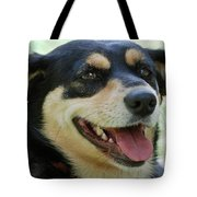 Ruby Tote Bag by Lisa  Phillips