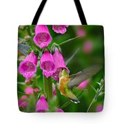 Rufous Hummingbird Tote Bag by Thomas and Pat Leeson