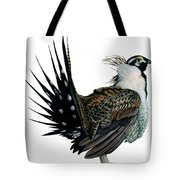 Sage Grouse  Tote Bag by Anonymous