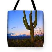 Saguaro Dusk Tote Bag by Mike  Dawson