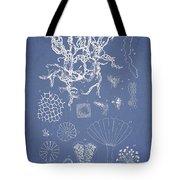 Salwater Algae Tote Bag by Aged Pixel