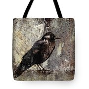 Same Crow Different Day Tote Bag by Carol Leigh