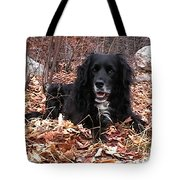 sammi smiling in leaves Tote Bag by Randi Shenkman