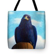 Santa Fe Smile Tote Bag by Brian  Commerford