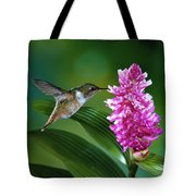 Scintillant Hummingbird Selasphorus Tote Bag by Michael and Patricia Fogden