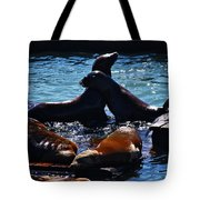 Sea Lions In San Francisco Bay Tote Bag by Aidan Moran