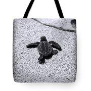 Sea Turtle Tote Bag by Sebastian Musial