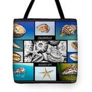 Seashell Collection Tote Bag by Kaye Menner